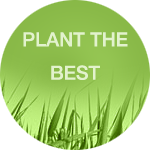 Plant the Best